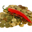 Heap of coins and red hot chili peppers — Stock fotografie