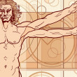 Royalty-Free Stock : The Vitruvian man (Fragment)