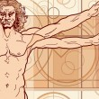 Royalty-Free Stock Vector Image: The Vitruvian man (Fragment)