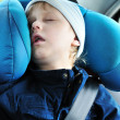 Stock Photo: Sweet dreams in car