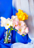 Spring freesias in the soft focus — Stock Photo