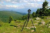 Camera on a tripod — Stock Photo