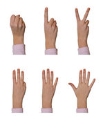Hands, counting 0 to 5 — Stock Photo