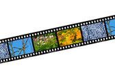 Nature seasons in film frames — Stock Photo