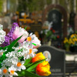 Flowers and cemetery — Stock Photo