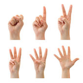 Counting hands (0 to 5) — Stock Photo