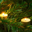 Candles and christmas tree - Stock Photo