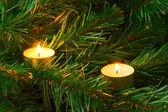 Kaarsen en kerstboom — Stockfoto