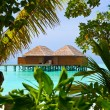 Water bungalows on a tropical island — Stock Photo #4219710