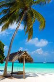 Swing on a tropical beach — Stockfoto