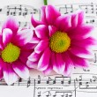 Flowers on sheet music - Stock Photo