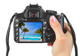 Camera in hand and beach landscape — Stock Photo