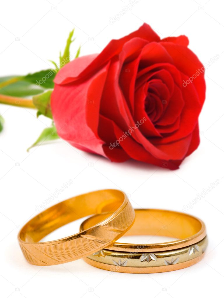 Wedding rings and rose isolated on white background — Stock Photo #4235734