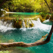 Royalty-Free Stock Photo: Plitvice lakes in Croatia