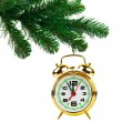 Christmas tree and clock — Stock Photo