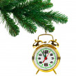 Stock Photo: Christmas tree and clock