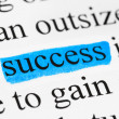 Stock Photo: Word success in text