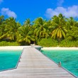 Jetty, beach and jungle — Stock Photo #4265843
