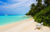 Chair on tropical beach — Stock Photo