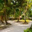 Bungalows on beach and sand pathway — Stock Photo #4270080