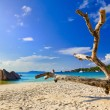 Beach Anse Lazio at island Praslin, Seychelles — Stock Photo #4277930