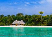 бунгало на тропическом пляже — Стоковое фото