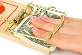 Hand and mousetrap with money — Stock Photo