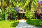 在丛林中的小屋 — 图库照片