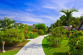 Pathway and bungalows in tropical park — Stock Photo