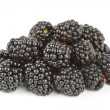 Blackberry — Stock Photo #4282882