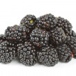 Blackberry - Foto de Stock