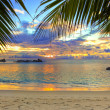 Tropical beach at sunset — Stock fotografie #4283113