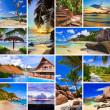 Collage of summer beach images - Stok fotoğraf