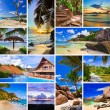 Collage of summer beach images - Foto Stock