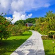 Stock Photo: Pathway in tropical park