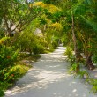 Bungalows on beach and sand pathway - Stock Photo
