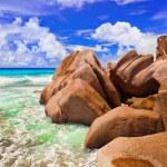 Stones on tropical beach — Stock Photo #4285099