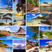 Yaz plaj fotoğraf kolaj — Stok fotoğraf