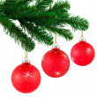 Christmas tree and balls — Stock Photo