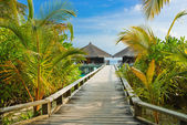 Water bungalows on a tropical island at evening — Foto de Stock
