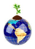 Globe and plant — Stock Photo