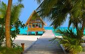 在一个热带岛上潜水俱乐部 — 图库照片