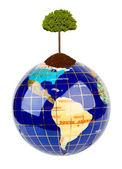 Globe and tree — Stock fotografie
