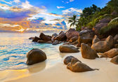 Tropical beach at sunset — Stock Photo
