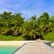 Jetty, beach and jungle — Stock Photo #4343932