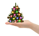 Christmas tree in hand — Stock Photo