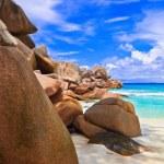 Stones on tropical beach — Stock Photo #4493876