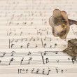 Граммофон на старые ноты — Стоковое фото