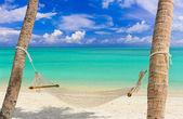 Hammock on a tropical beach — Stock Photo