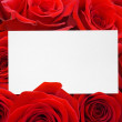 Paper card and roses bouquet — Stock Photo #5169572